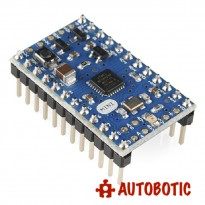 Original Arduino Mini 05