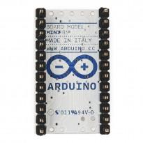 Original Arduino Mini 05