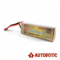 11.1V 3s 30c 5000mAH Rechargeable LiPo Battery