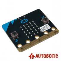 micro:bit Board (Limited Time)