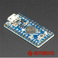 Adafruit ItsyBitsy 32u4 - 5V 16MHz